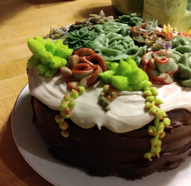 Succulents // buttercream // cactus // cake decorating // copperandglass homestead