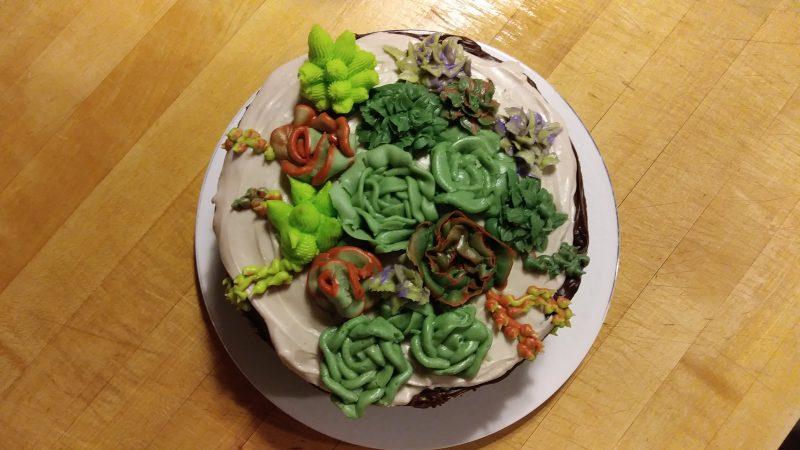 Buttercream succ ulents//cake// cactus// succulents// creative experiments
