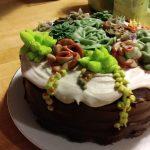 Succulents // buttercream // cactus // cake decorating // copperandglass homestead